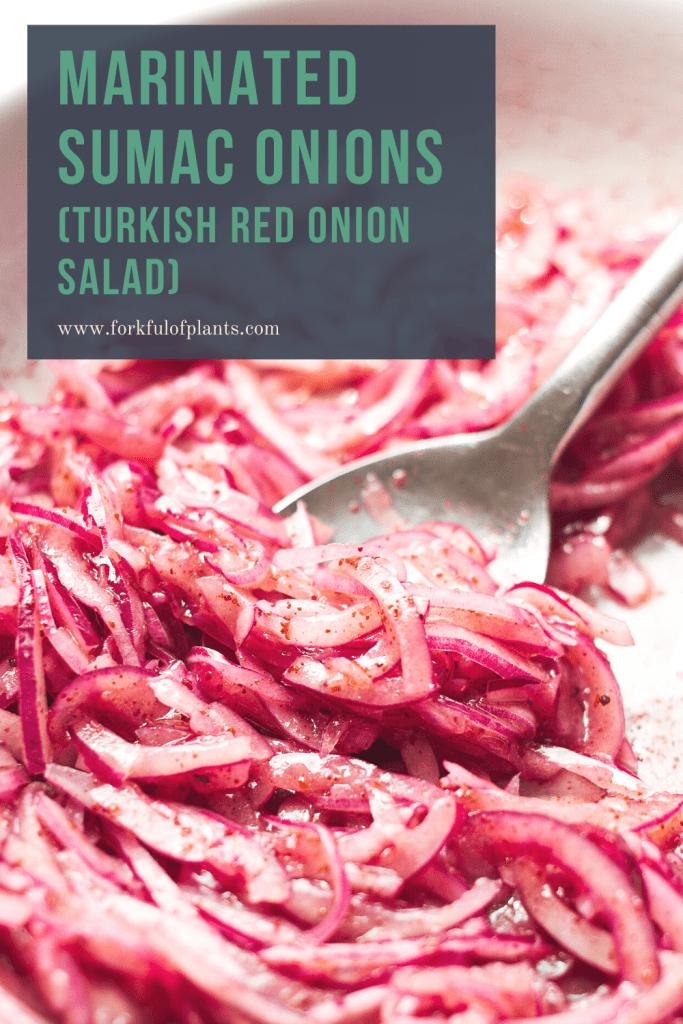 Marinated sumac onions pin image